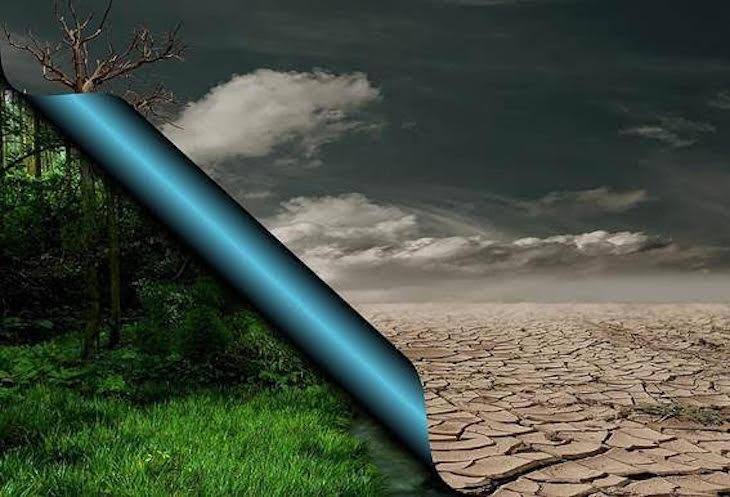 24 de octubre – Día Internacional contra el Cambio Climático 2020